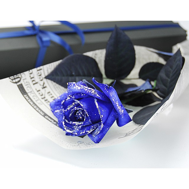 A Blue Rose in Gift Box