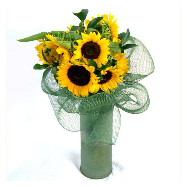 Sunflower Smile Again