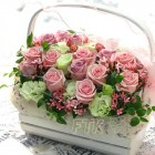 Happy Time Rose